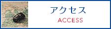 banner_access